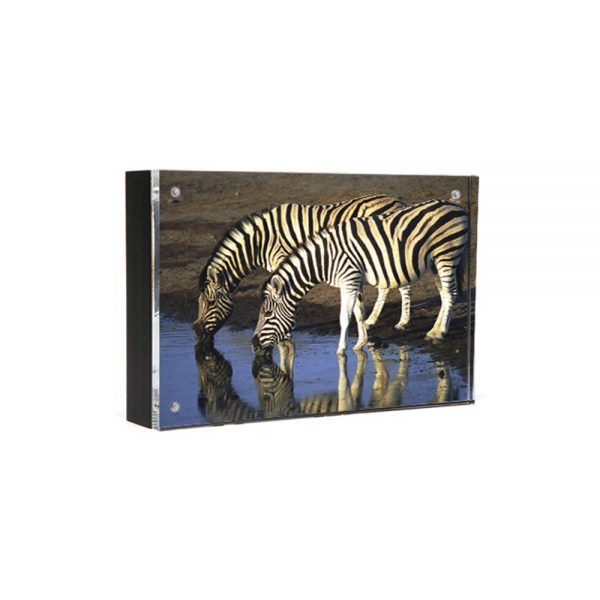 Wood Back Magnet Frame - black