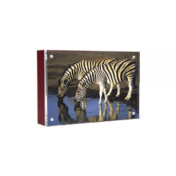 Wood Back Magnet Frame - mahogany