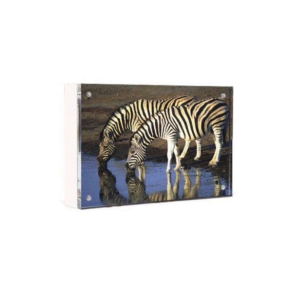 Wood Back Magnet Frame - white